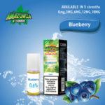 blueberry-eliquid-10ml