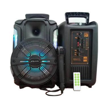 KTS 1175 Karaoke-mic